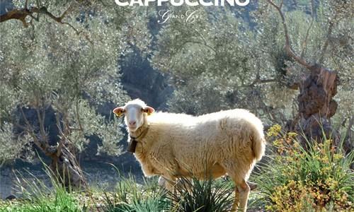 Cappuccino Grand Café Pepe Link Selection Vol. 10