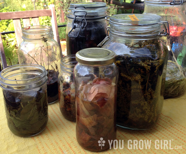 Dyeing Fabric With Plants About Dyeing With Plants