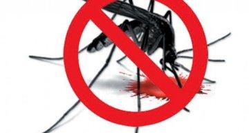 Dengue with DPLI