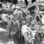 Mainstream media sells out Hindu families again in Kairana