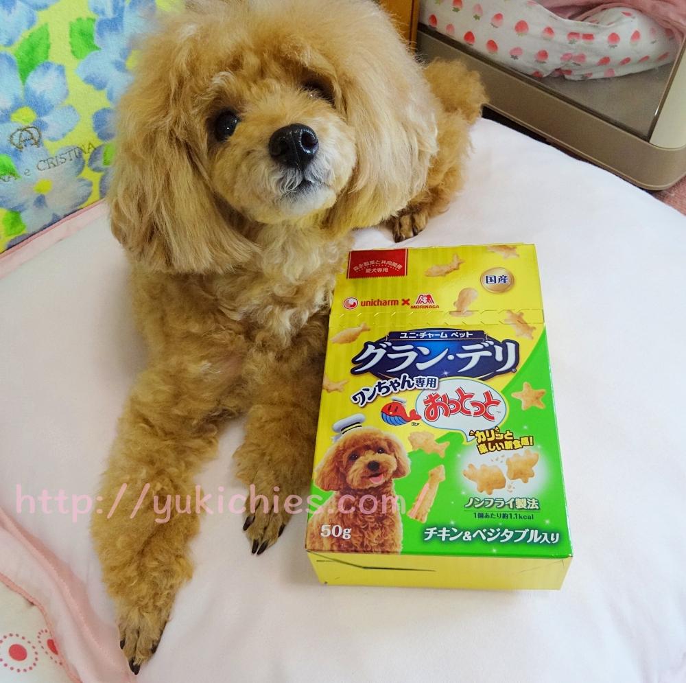 犬用おやつ おっとっとグラン・デリ カリッと楽しい新食感! ノンフライ製法 チキン&ベジタブル入り 杏ちゃん