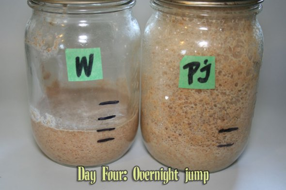 Starter Day Four: an Overnight Jump