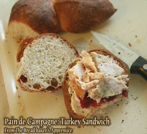 36-Campagne_Turkey-Sandwich