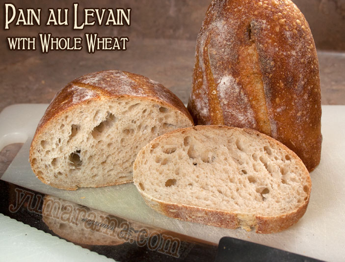 Pain au Levain with Whole Wheat