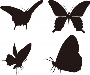 夢占い虫の夢の意味13パターンを診断!驚く程当たる未来