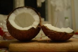 coconut-729059_640