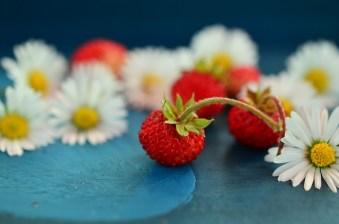 strawberries-800521_640