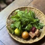 紫蘇・夏野菜・しそ・大葉・保存食
