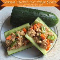 Sesame Chicken Cucumber Boats (4)