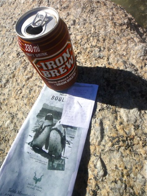 Drinking an Iron Brew Soda While Penguin Watching at Boulders Beach in Simon's Town, South Africa via ZaagiTravel.com