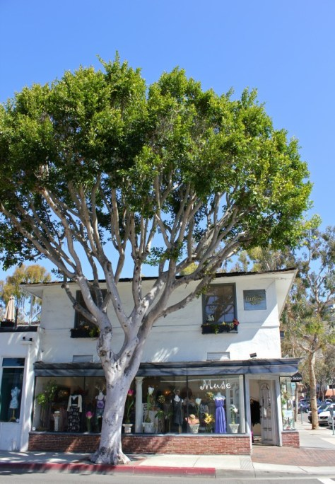 Muse Clothing and Accessory Boutique in Laguna Beach, California via ZaagiTravel.com