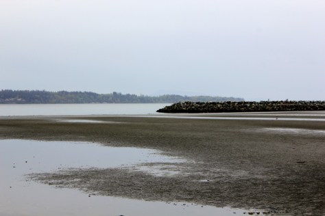 A view of the United States from the Canadian beach of White Rock, British Columbia, Canada via ZaagiTravel.com