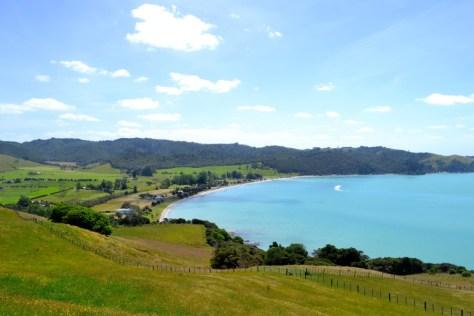 View from top of Duder Regional Park in New Zealand via ZaagiTravel.com