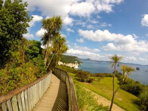 Hike to Cathedral Cove in the Coromandel, New Zealand via ZaagiTravel.com