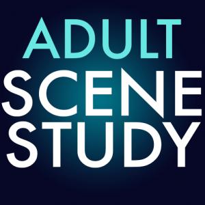 Adult-Scene-Study