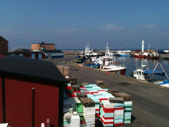 Fiskhamnen i Simrishamn