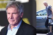 Harrison Ford Broken Leg