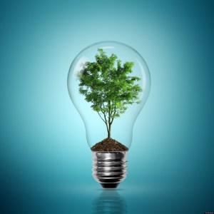 energie-verde-02