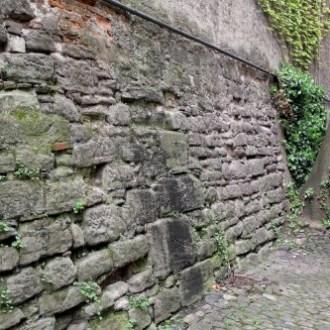 gesichtet #134: Die Drahtzugschanze – ein verborgenes Relikt der Kleinbasler Stadtbefestigung