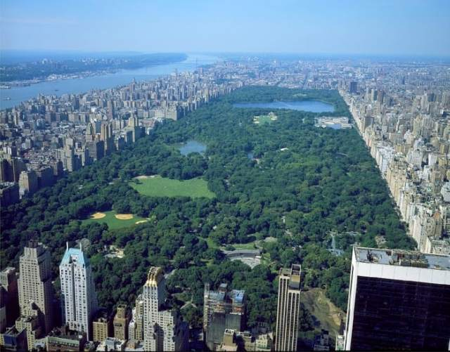 view over central park new york