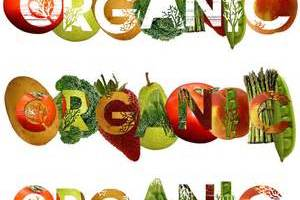 5 Benefits of Eating Organic Food