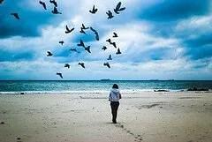 Foto da Flickr di Amarit Opassetthakul
