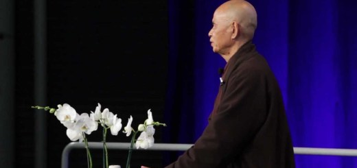 video thich nhat hanh a google