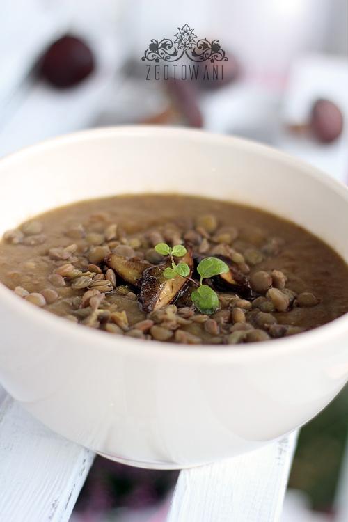 zupa-krem-z-grzybow-lesnych-z-soczewica-8