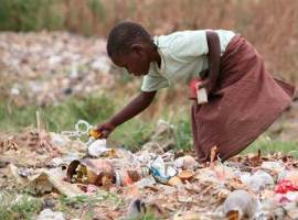 Hunger in Zimbabwe: drought or disastrous policies?
