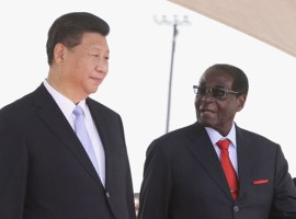 Kick out all Chinese nationals: Biti's PDP