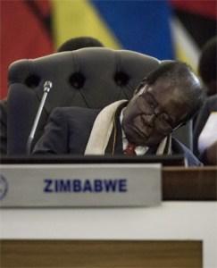Mugabe Sleep