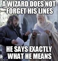 A wizard...