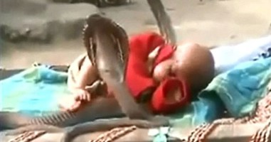 Freaky Video Shows a Baby Sleeping Peacefully While Surrounded By Cobra Snakes