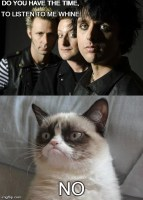 Green Day vs Grumpy Cat