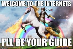 welcome to the internets
