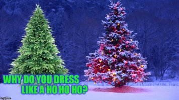 The 14 Christmas Memes Till Christmas Event