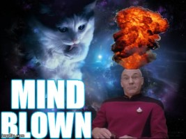 Captain Picard Mind Blown