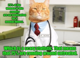 Image tagged in cat doctor
