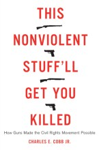 this_nonviolent_stuff_cobb