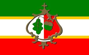 Żołynia Flaga Herb