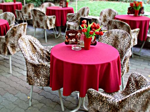 bekescsaba-tulips-on-the-table-final