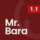 Download Mr.Bara - Responsive Multi-Purpose eCommerce WordPress Theme from ThemeForest