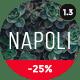 Download Napoli - Modern Photography Portfolio Theme from ThemeForest