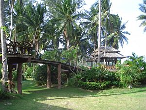 Koh-Phangan-Thailand-0_CIMG0014