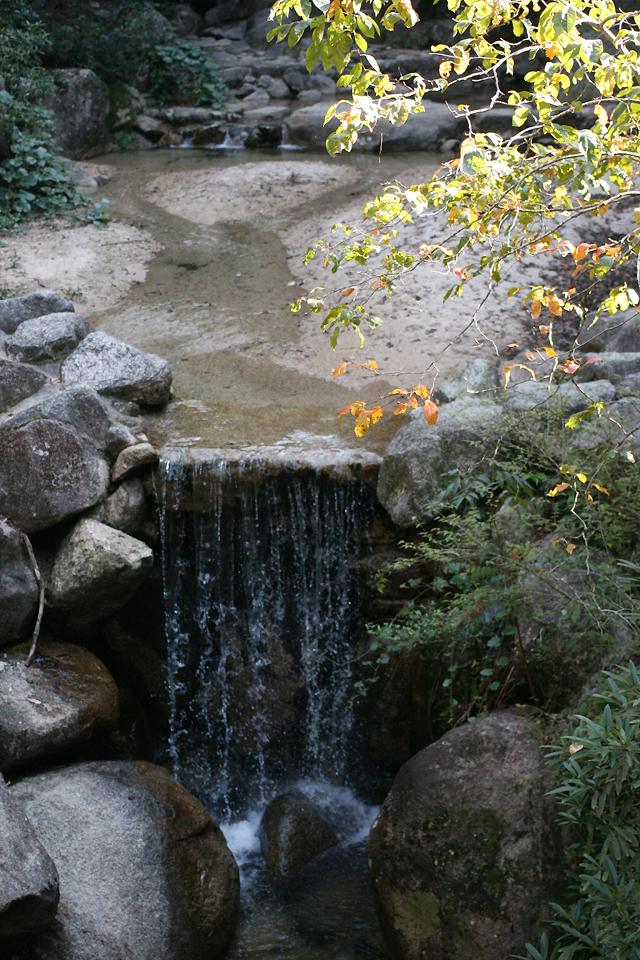 1 Miyajima water