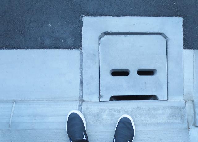 himeji faces