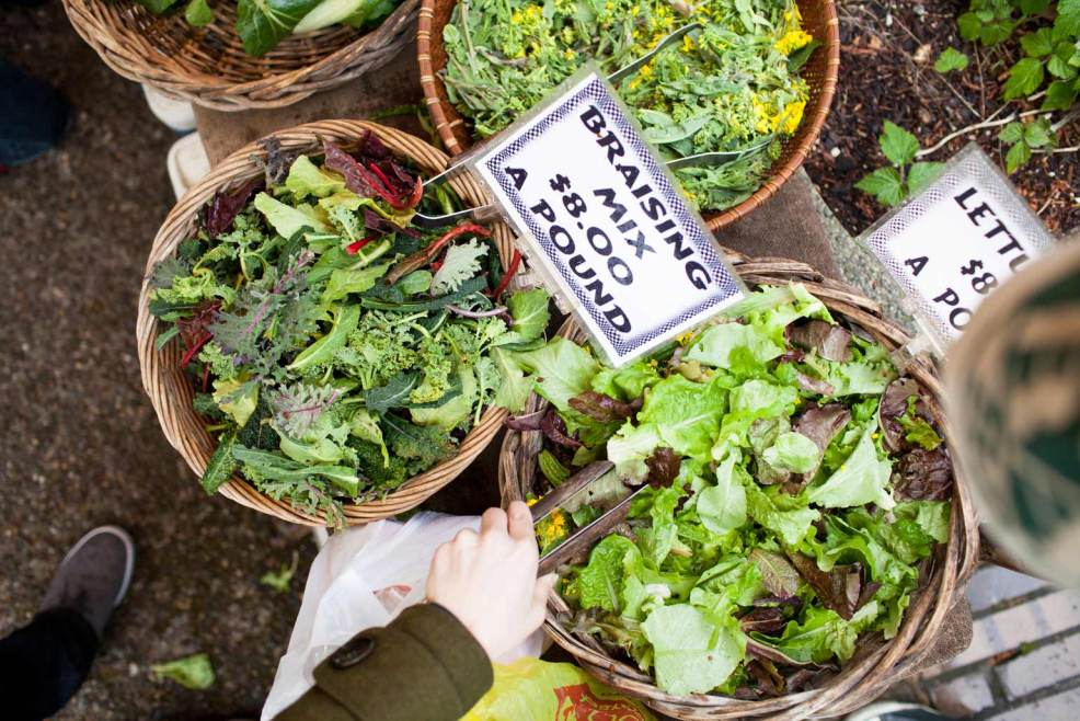 Portland-Food-Blogs
