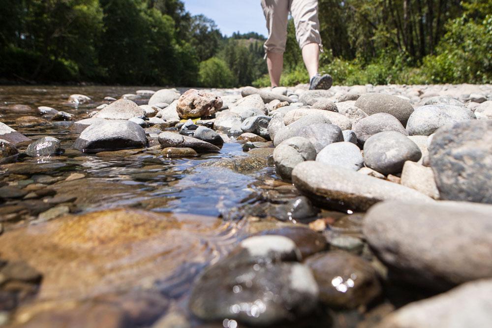 Walk Along River