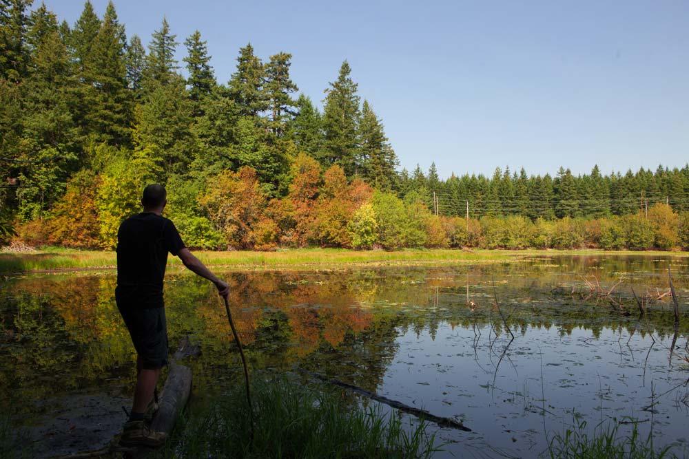 Oregon Hikes brilliant fall foliage