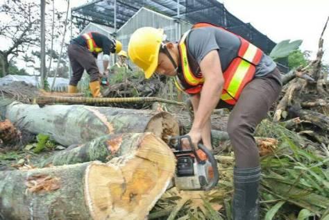 0302花農學生林業實習